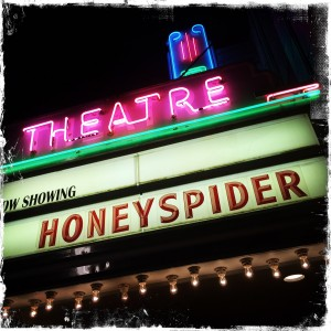 The Honeyspider Premier at The Gem